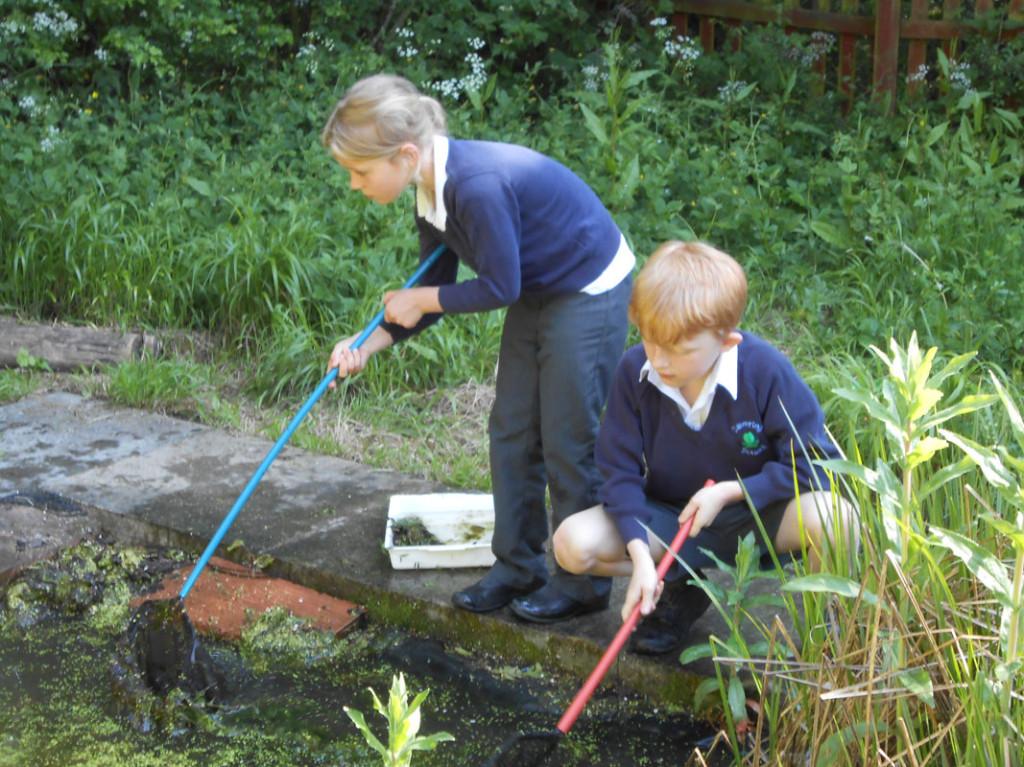 pond-dipping-yr2
